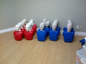 Adult training mannequins in the Saskatoon First Aid training room